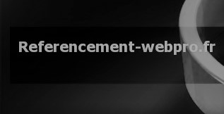 Referencement webpro
